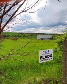 Tibolddarócón ipartelek csarnokkal ELADÓ., Borsod-Abaúj-Zemplén megye